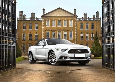 Mustang_header